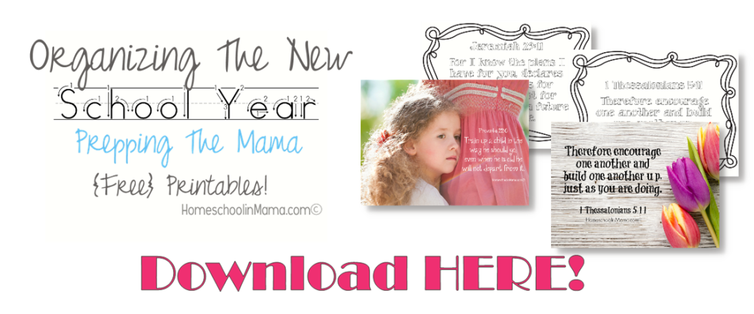 Organizing The New School Year - Prepping The Mama with {free} download.