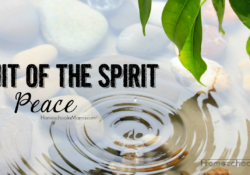Fruit of the Spirit Bible Study - Peace