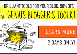 The Genius Blogger's Toolkit {Flash Sale}
