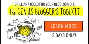 The Genius Blogger's Toolkit {Flash Sale}