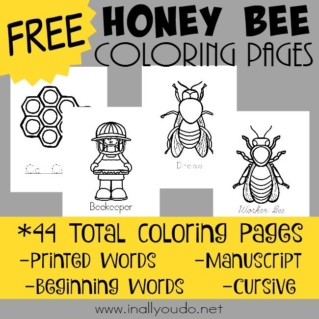 Honeypot Preschool: Your Spot For Homeschool Freebies